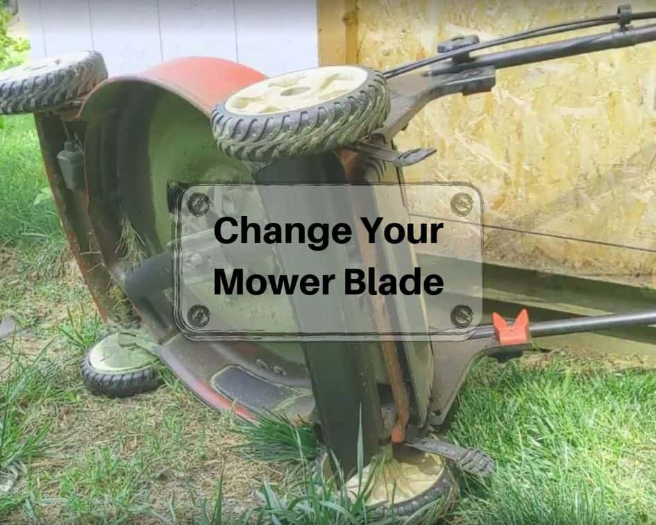 Change Your Mower Blade