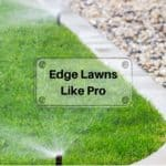 How to edge a lawn like a pro? (Steps & tools to use!)