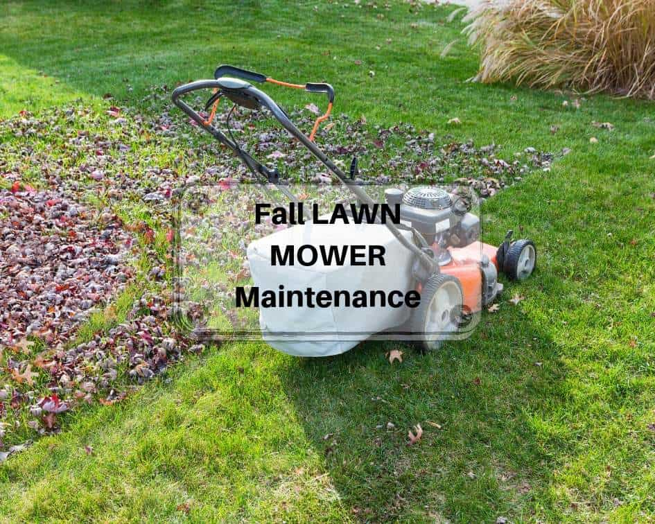 Fall LAWN MOWER Maintenance